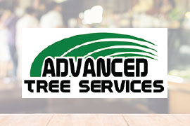 Advanced Tree Service